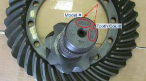 How to identify your differential